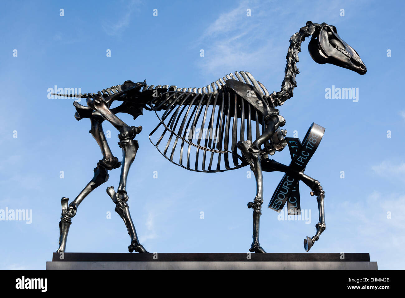 Gift horse is a bronze sculpture of a horse skeleton on the fourth gift horse is a bronze sculpture of a horse skeleton on the fourth plinth in trafalgar square london created by hans haacke negle Images
