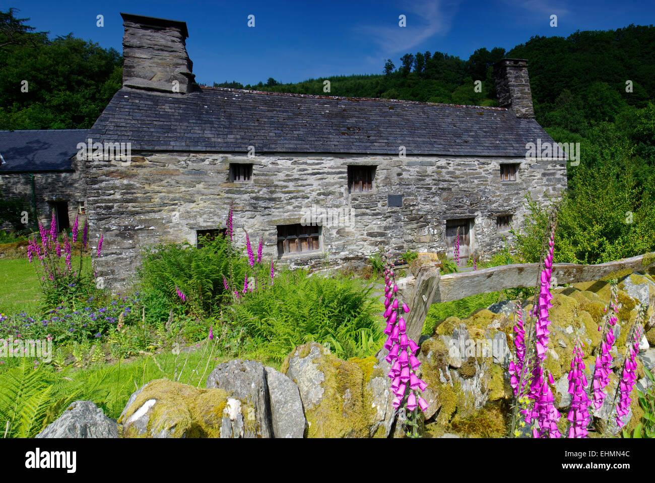 Ty Mawr Wybrnant, Penmachno, Snowdonia - Stock Image