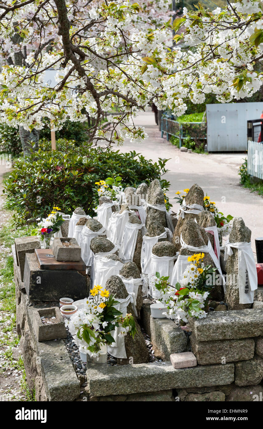 Kyoto, Japan. A roadside shrine beneath a cherry tree with rocks representing Jizo, protector of travellers and - Stock Image