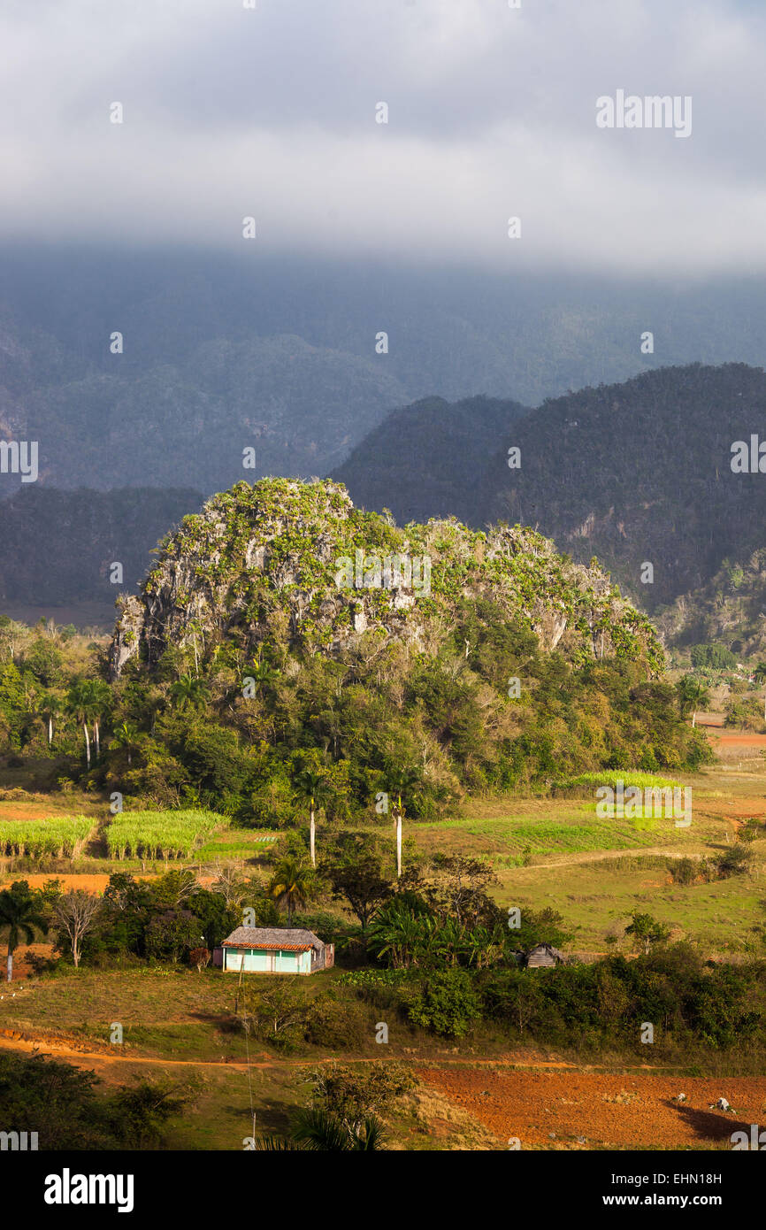 Landscape of Viñales, Cuba, renowned for the quality of its tobacco and wooded hills, prehistoric limestone - Stock Image