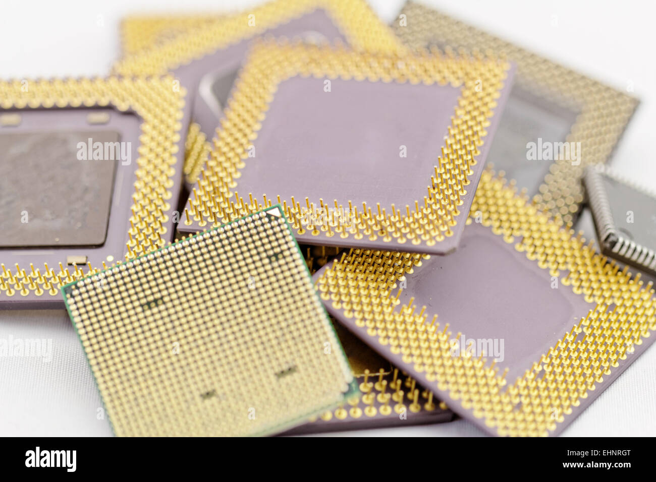 close up of many different cpu processors - Stock Image