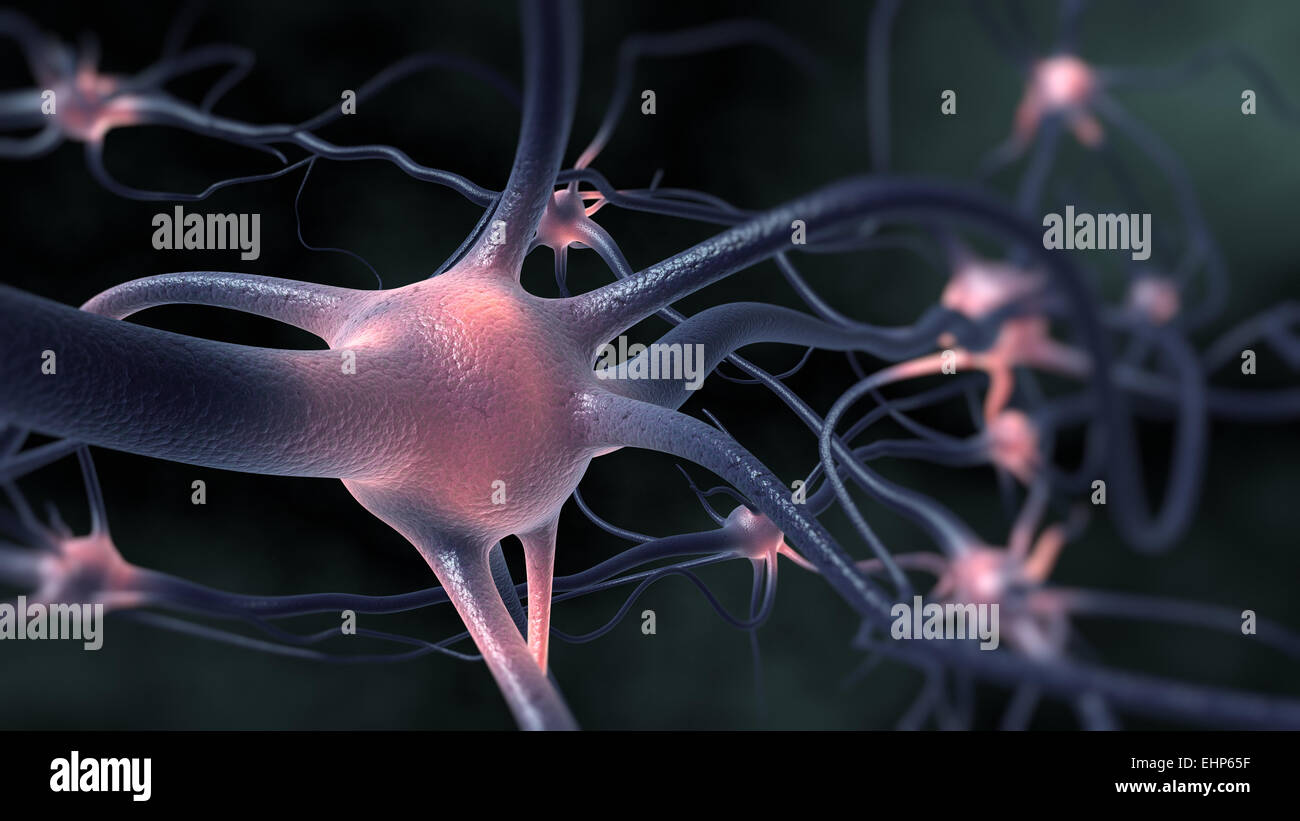 Excitation of the nervous system. - Stock Image