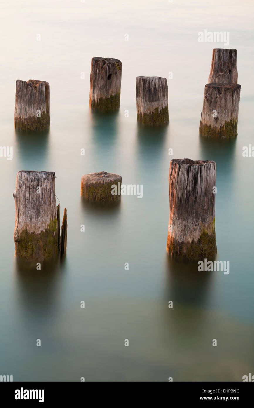 Wooden posts left over from an old pier in the St. Clair River. - Stock Image