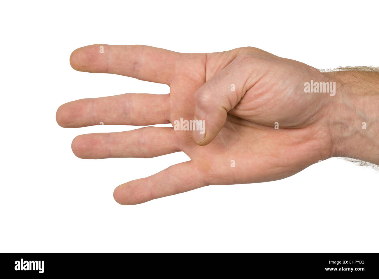 four fingers of a hand Stock Photo