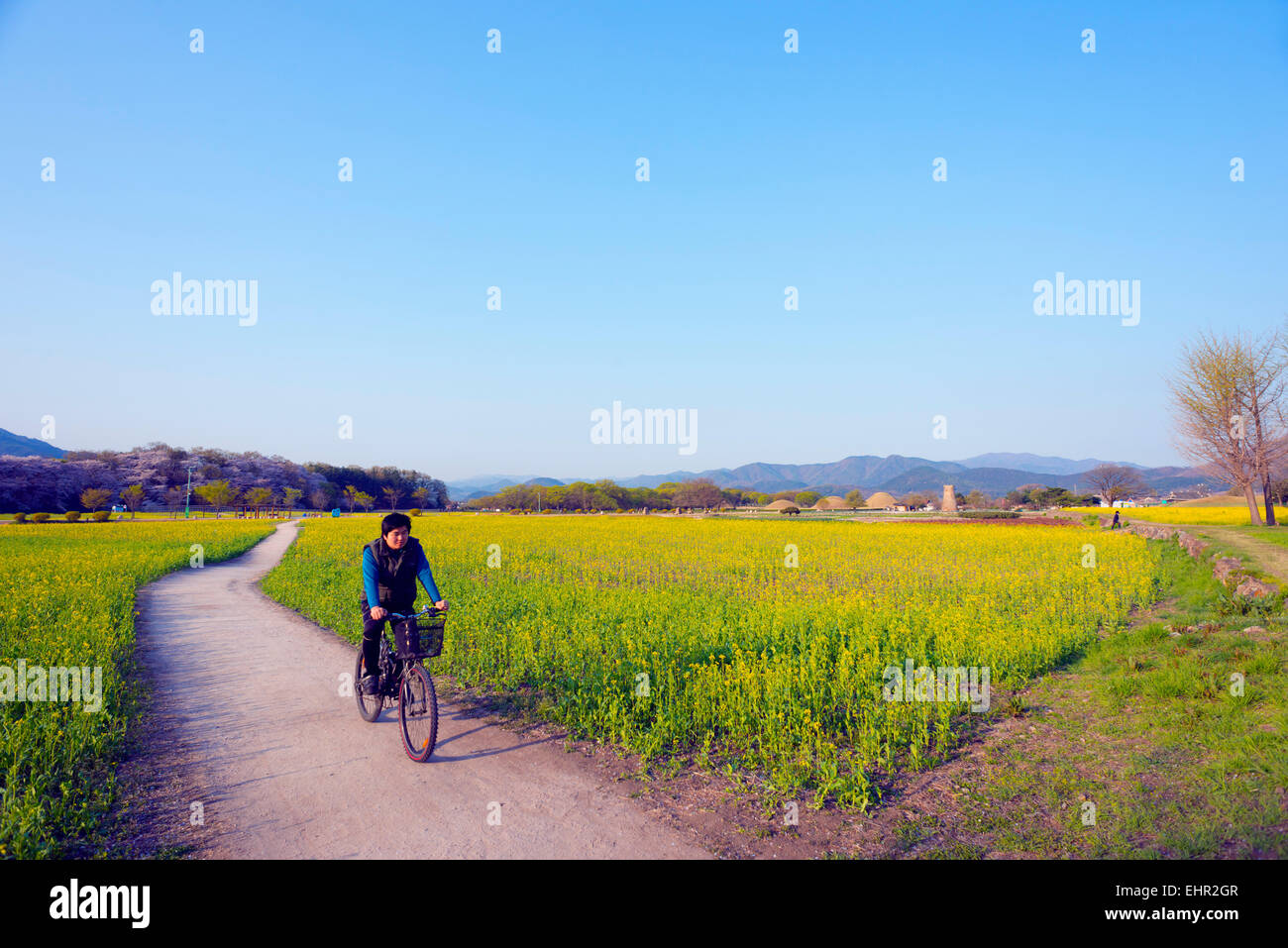Astronomical Spring Stock Photos Amp Astronomical Spring