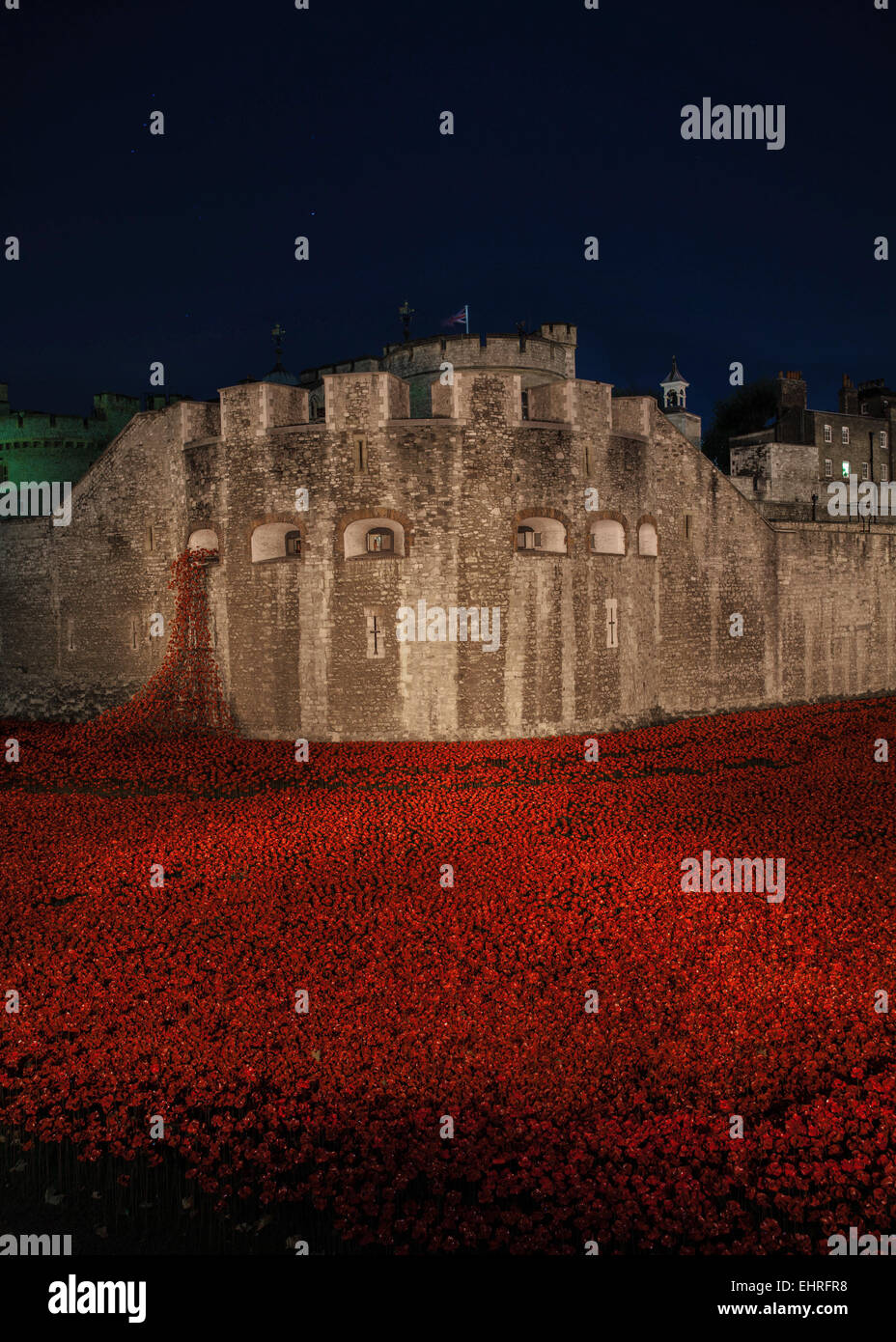 The poppy exhibition for Remembrance Day at the Tower of London - Stock Image
