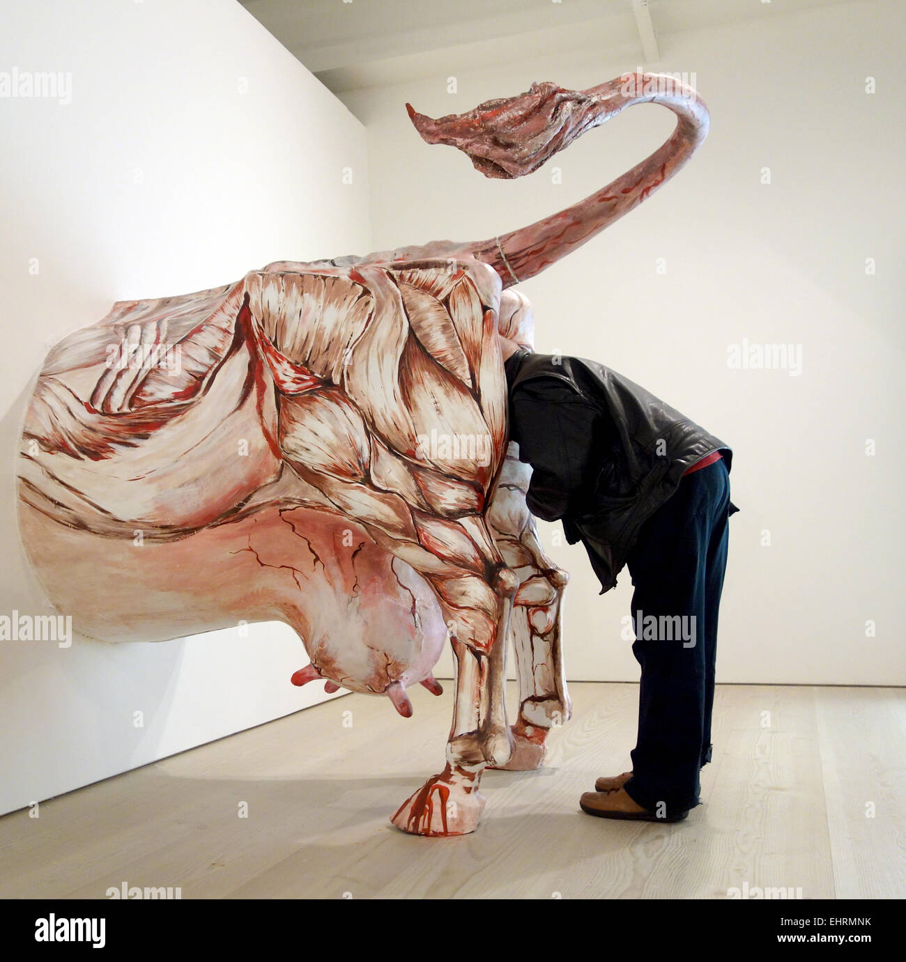 A visitor looks at a work of art called 'Deep into Russia' by Oleg Kulik at the Saatchi gallery London - Stock Image