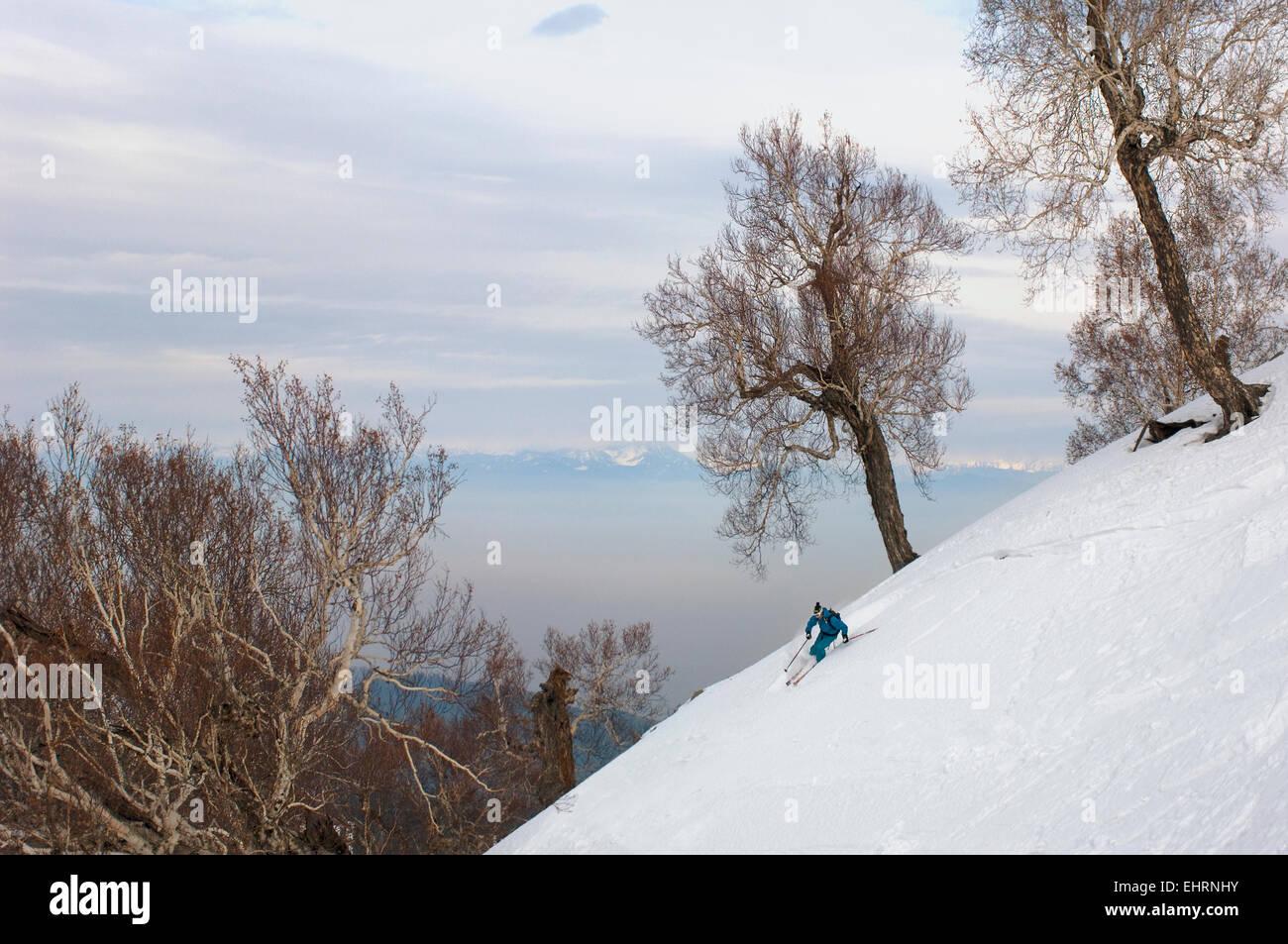 skier skis off-piste in gulmarg ski resort, mt apharwat, kashmir