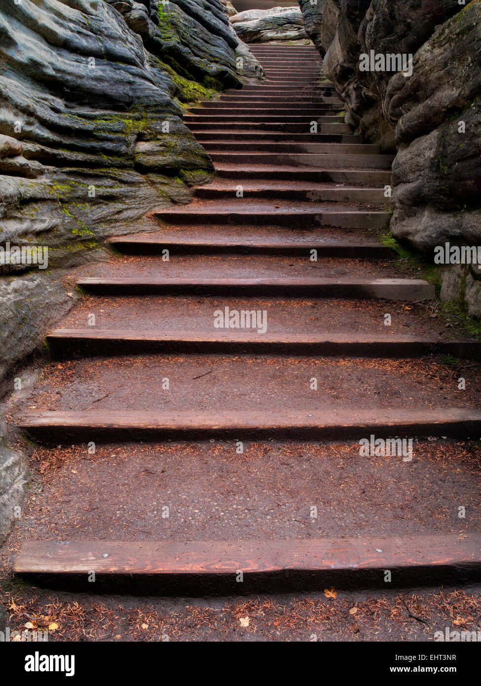 Stairs through narrow canyon. At Athebasca Falls. Jasper National Park, Alberta, Canada - Stock Image