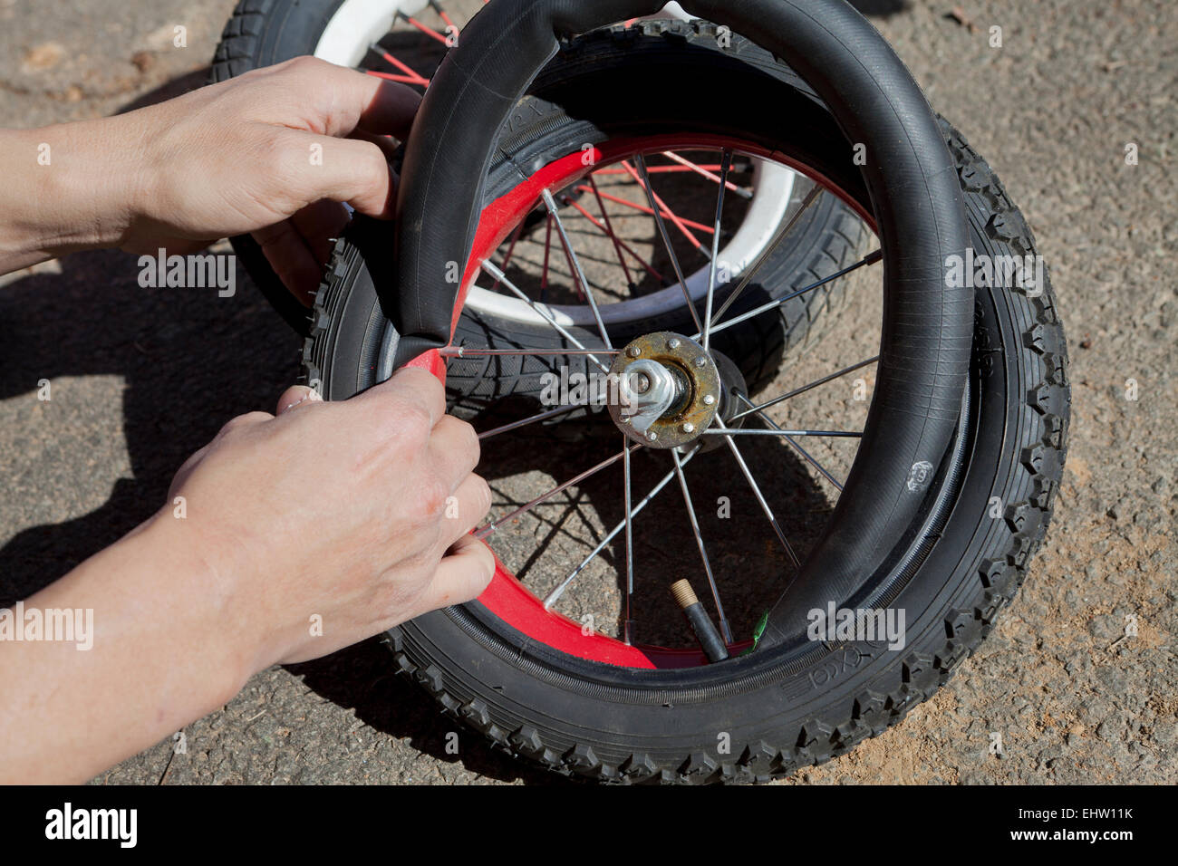 Man replacing inner tube on child's bicycle wheel - USA - Stock Image