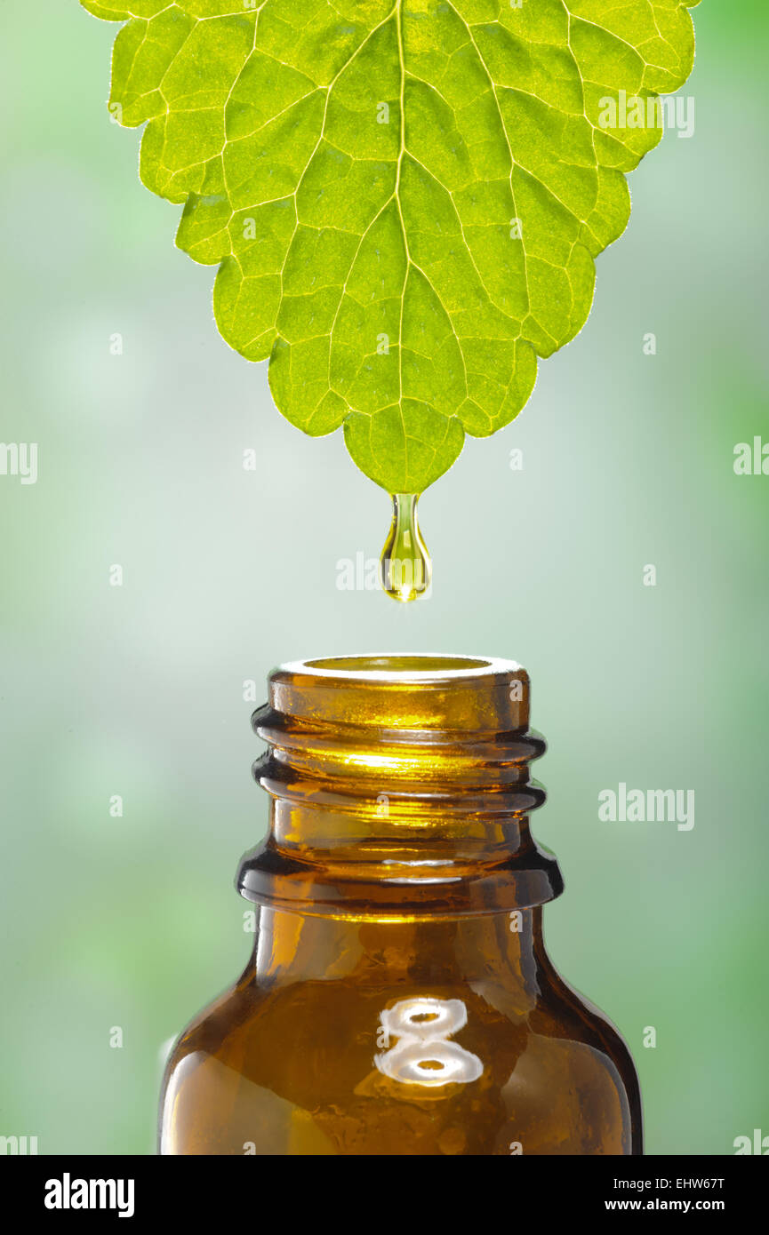 Alternative medicine and homeopathy - Stock Image