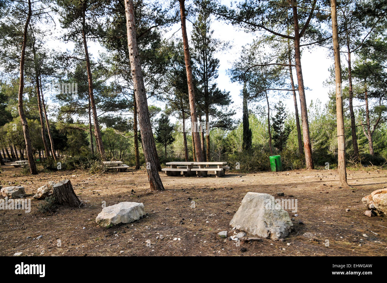 Public picnic site in the Carmel Forest, Israel - Stock Image