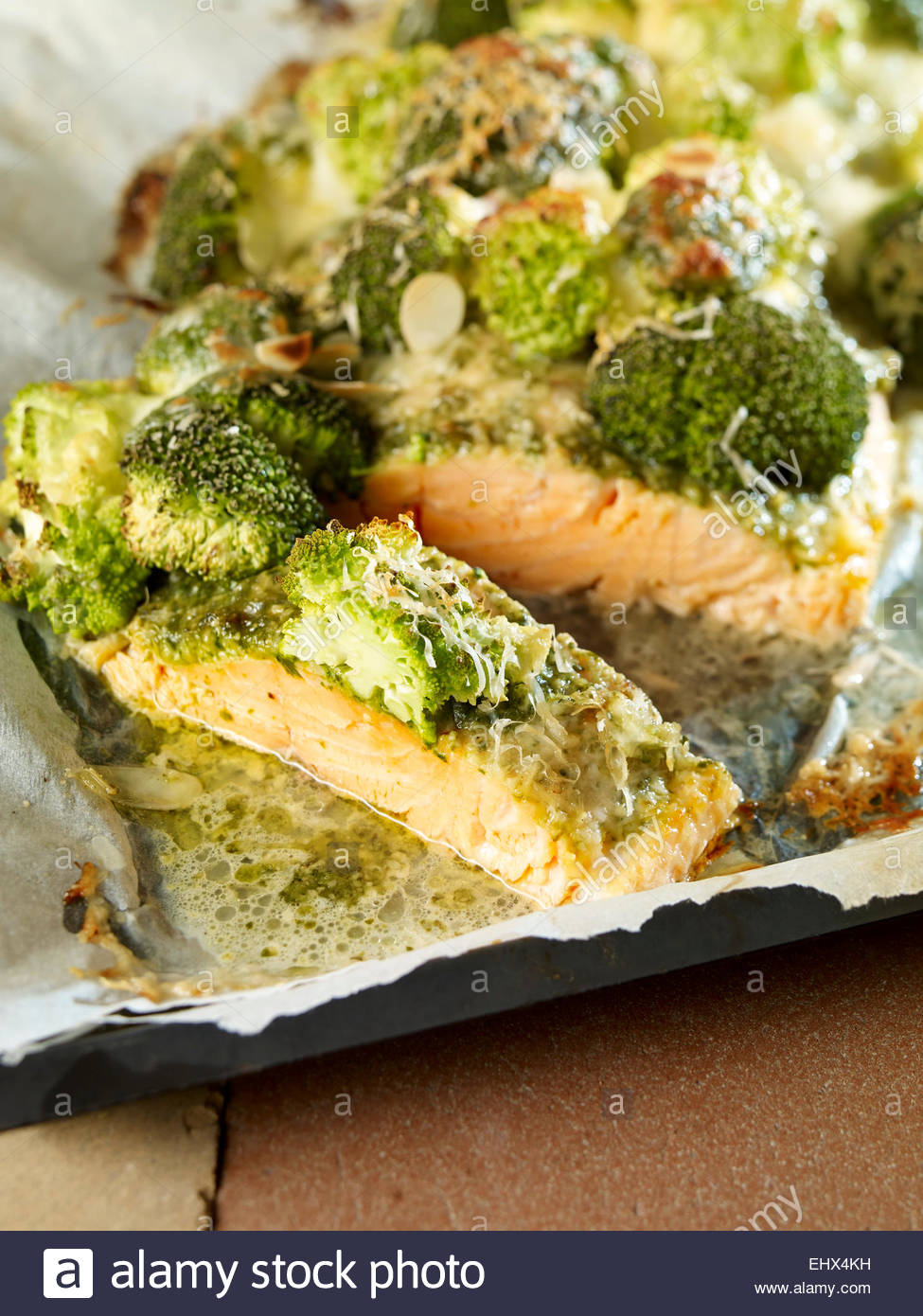 Wild salmon with broccoli and pesto gratinated with parmesan and mozzarella - Stock Image