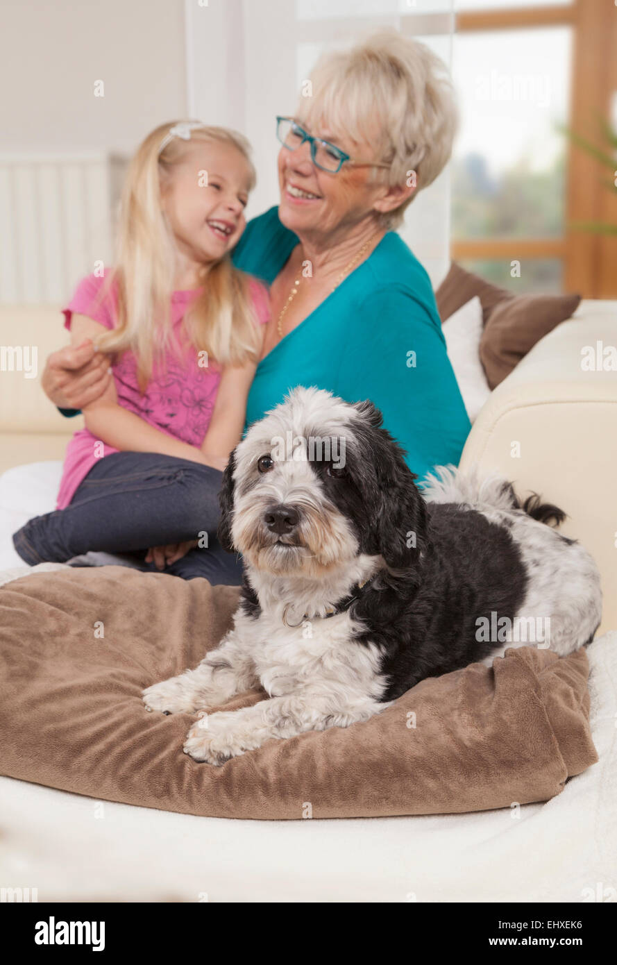 Senior woman with dog and granddaughter laughing in a living room, Bavaria, Germany - Stock Image