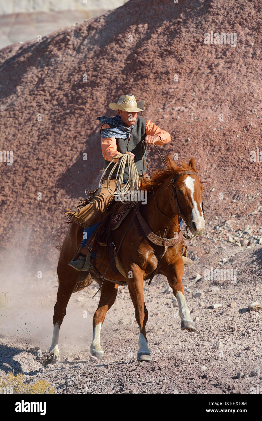 USA, Wyoming, Big Horn Mountains, cowboy riding with lasso in his hand - Stock Image