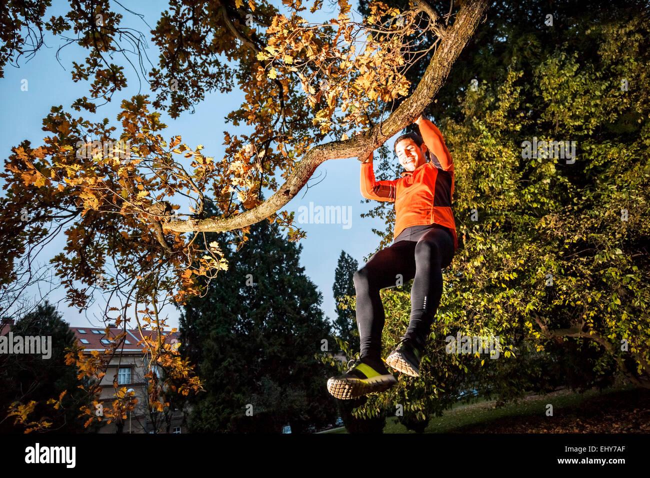 Male runner doing chin-ups in tree - Stock Image