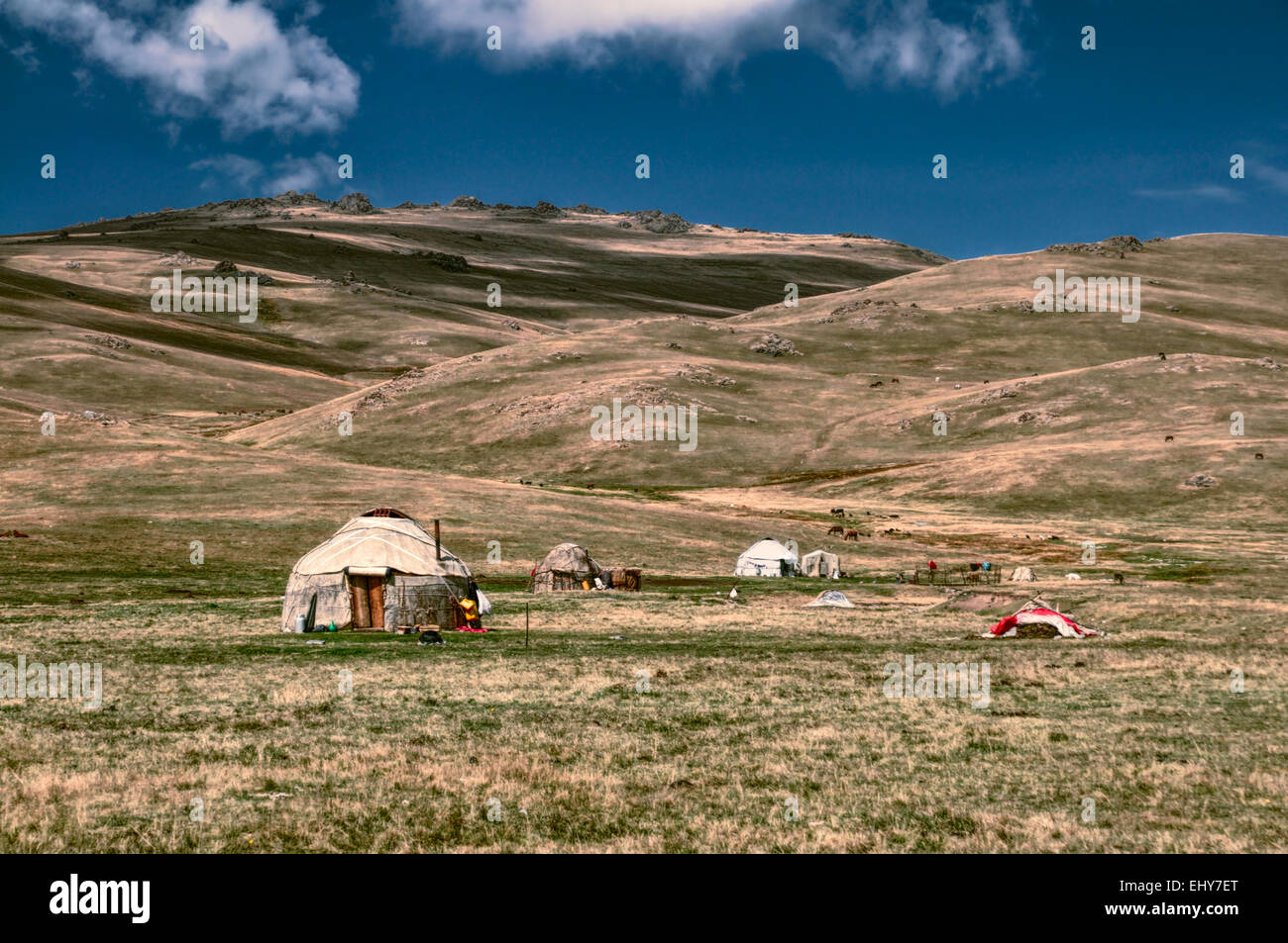Traditional yurts of nomadic tribes on green grasslands in Kyrgyzstan - Stock Image