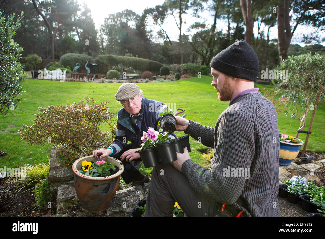Two men working in garden together, Bournemouth, County Dorset, UK, Europe - Stock Image