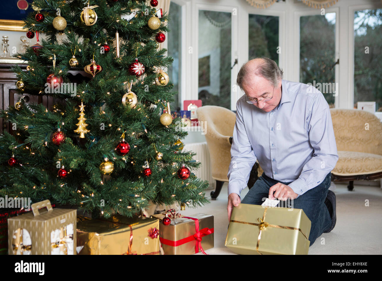 Senior man looking at gift parcel by Christmas tree - Stock Image