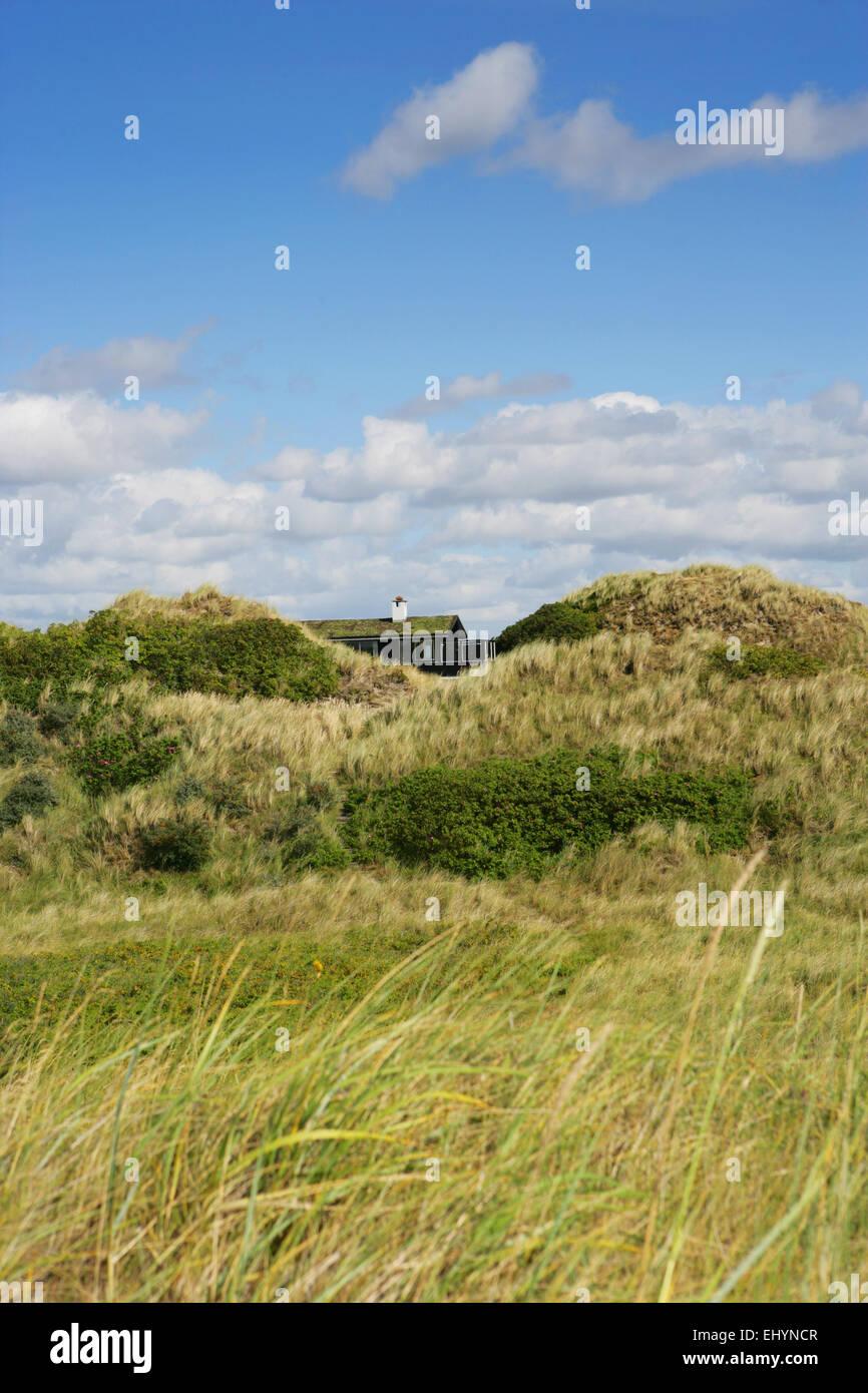 Summerhouse hidden in the dunes, Fanoe, Denmark - Stock Image