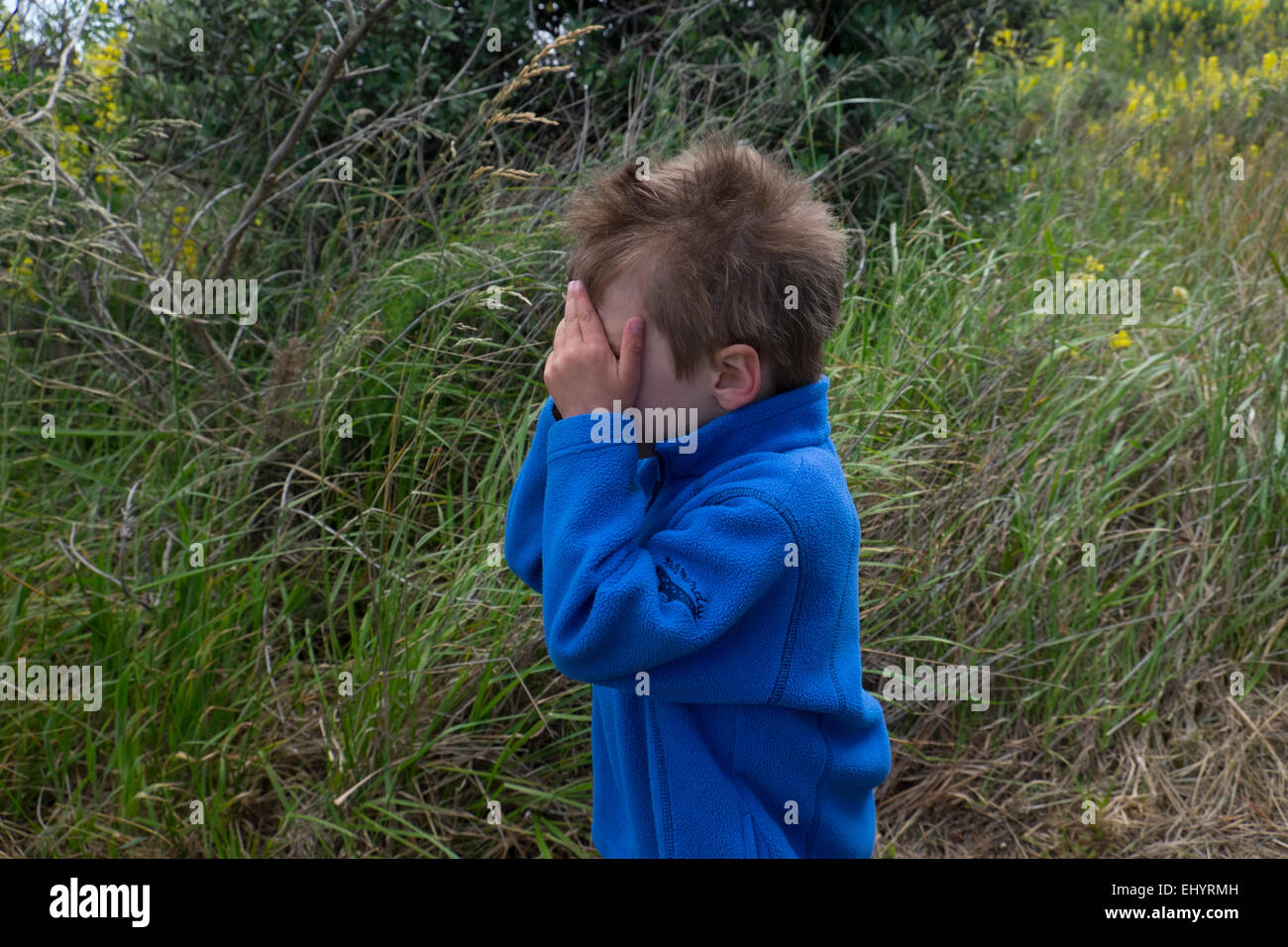 Child playing hide and seek in field, 4 year old boy - Stock Image