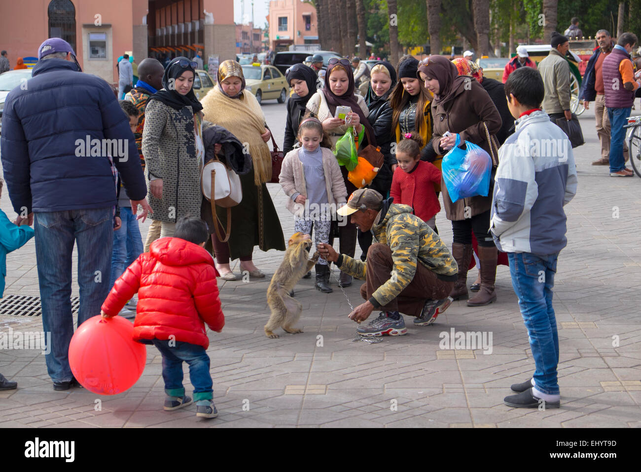Monkey entertaining shoppers, Djemaa el-Fna square, Medina, old town, Marrakesh, Marrakech, Morocco, North Africa - Stock Image