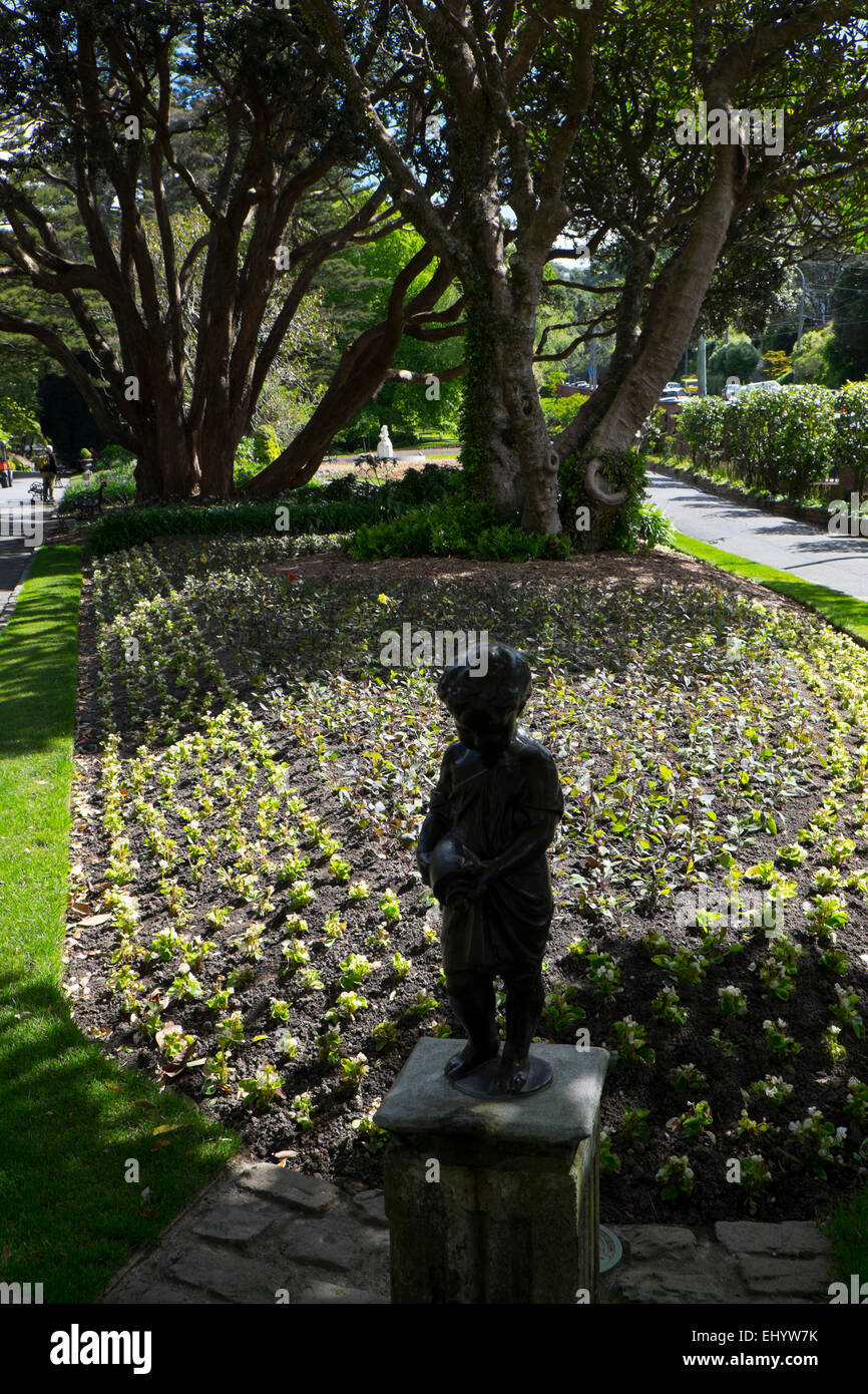 Botanic Garden, Wellington, North Island, New Zealand - Stock Image