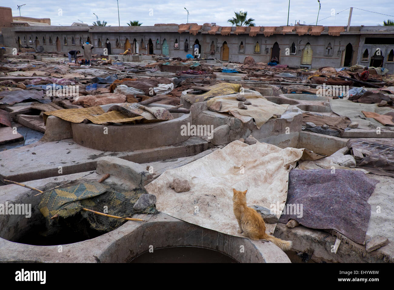 Tanneries (Tannery), outdoor tanning vats, Medina (Old Town), Marrakesh, Marrakech, Morocco, North Africa - Stock Image