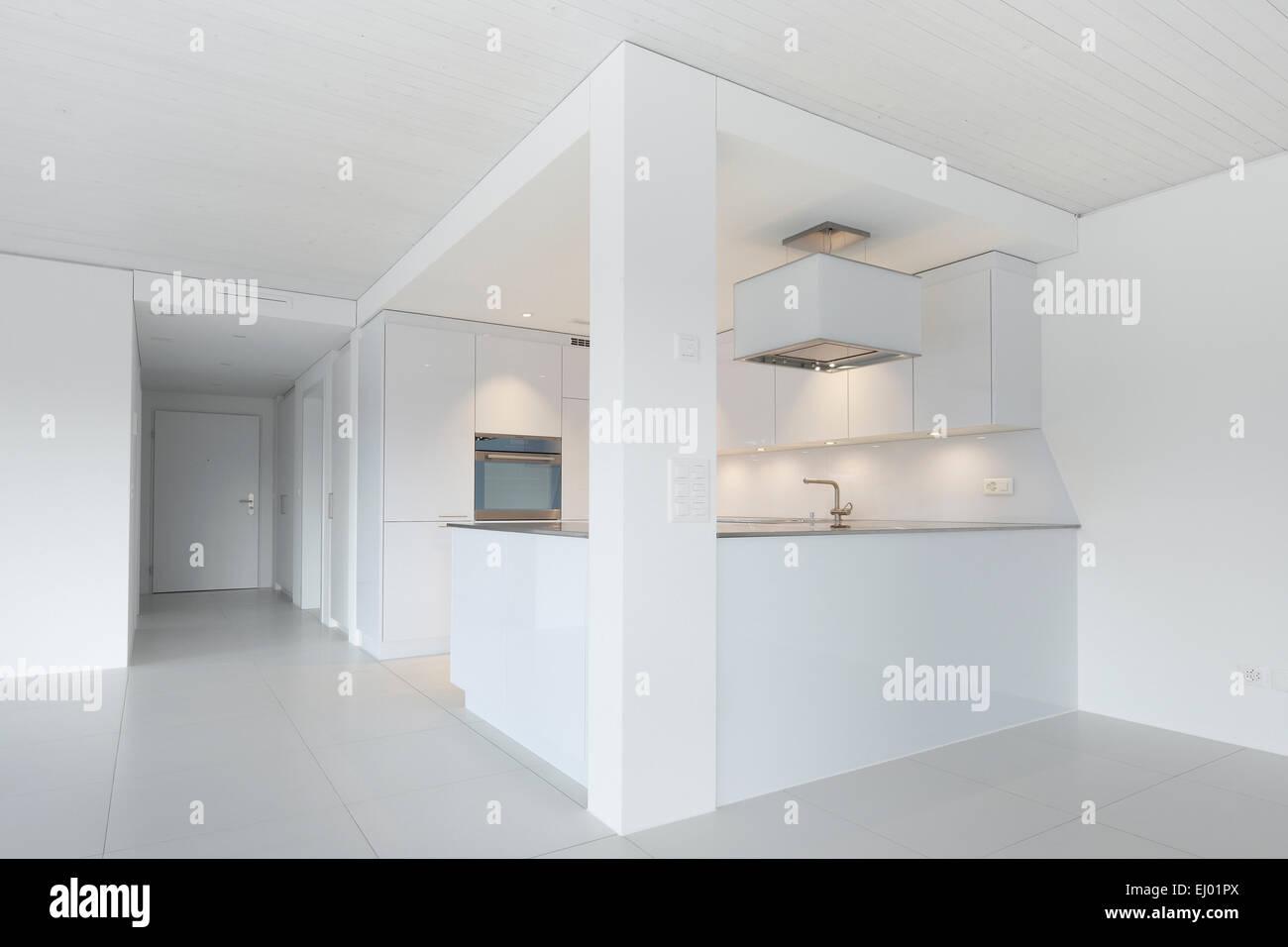 Architecture, chrome steel, house, home, interior, kitchen, Switzerland, apartment, white, modern, - Stock Image