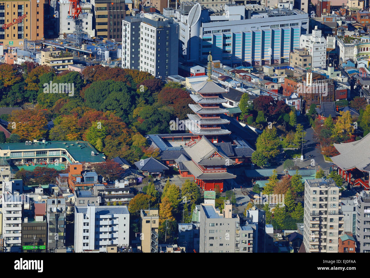 Asakusa, District, City, Japan, Asia, Kanto, Sensoji, Tokyo, aerial, architecture, autumn, colourful, fall, no people, - Stock Image