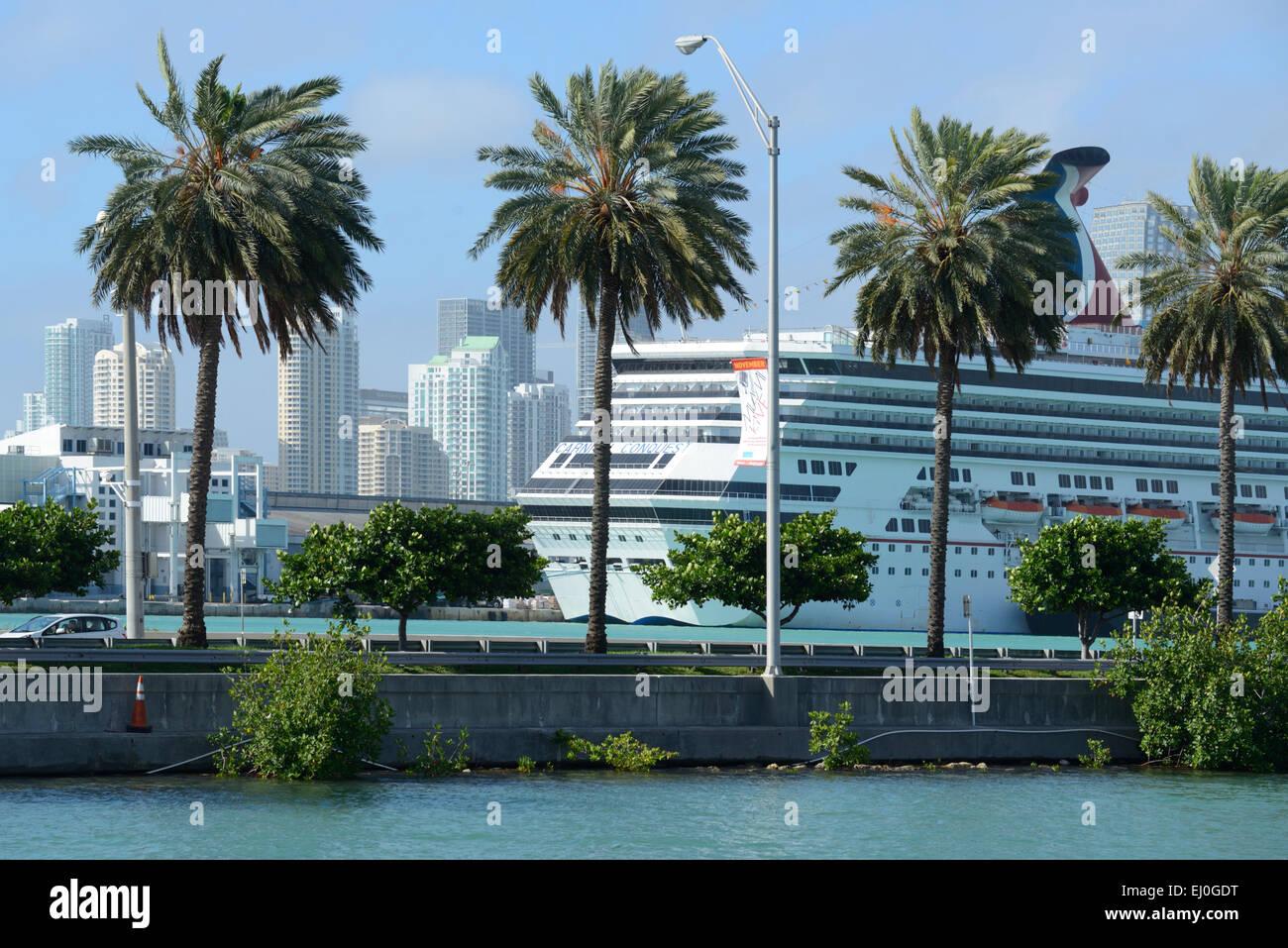 USA, Florida, Dade County, Miami Beach, cruise ship, palm, - Stock Image
