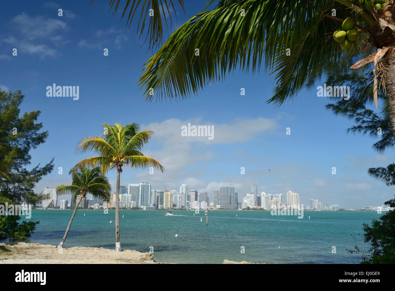 USA, Florida, Dade County, Miami, seen from Key Biscayne - Stock Image