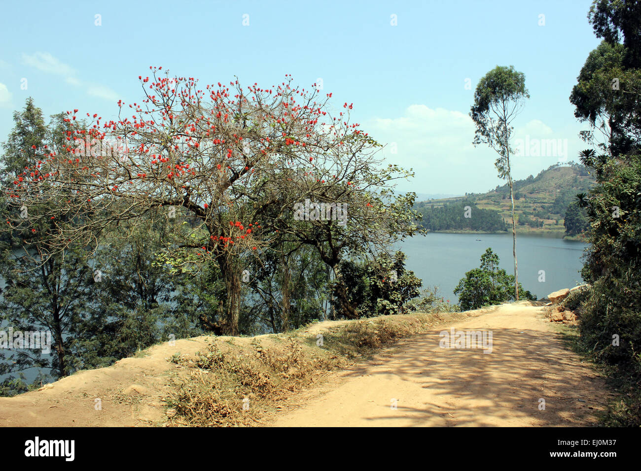 A road skirts Lake Bunyonyi in western Uganda - Stock Image