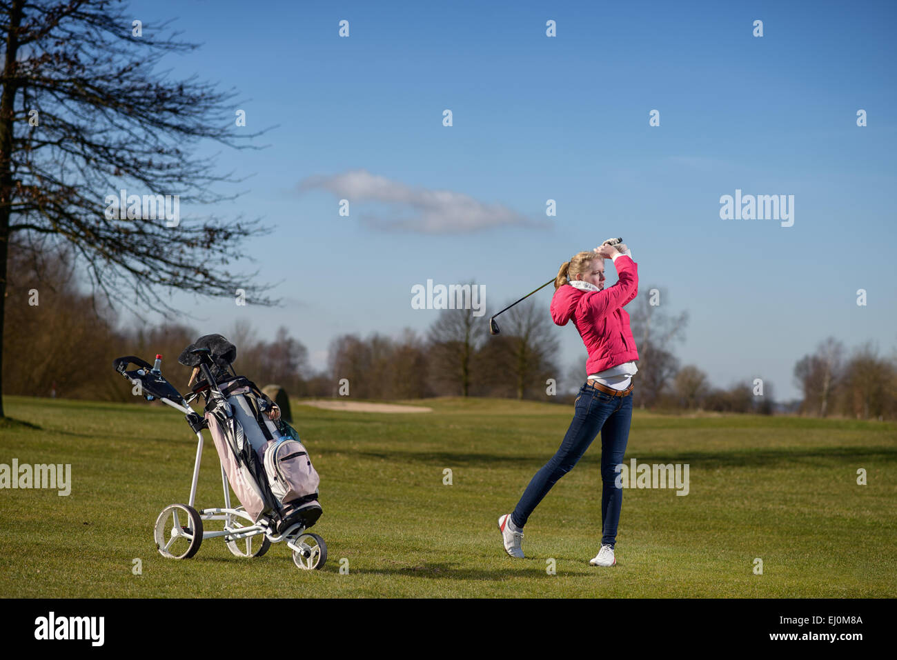 Attractive slender young woman golfer playing an approach shot on the fairway watching the flight of her ball after - Stock Image