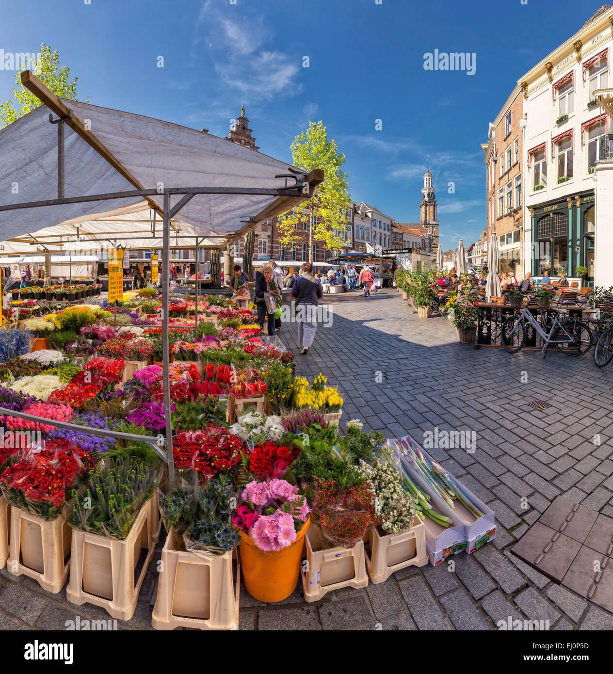 Netherlands, Holland, Europe, Zutphen, Gelderland, village, flowers, summer, people, Flower stand, Seed market - Stock Image