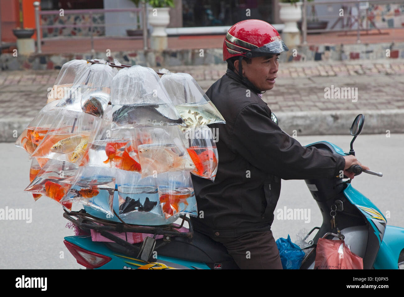 Ha Long, Hong Gai, Hon Gai, Hongay, Quang Ninh Province, Vietnam, SE Asia, South East Asia, mobile, scooter, vendor, Stock Photo