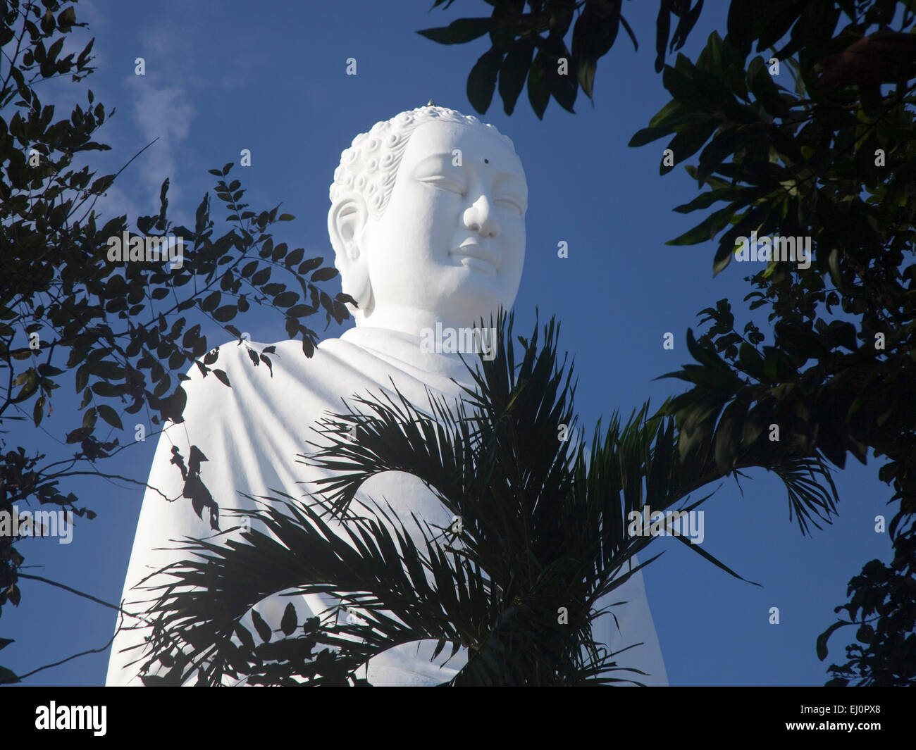 Giant white Buddha, Long Son Temple, Nha Trang, Khanh Hoa province, Vietnam, SE Asia, South East Asia, giant, white, Stock Photo