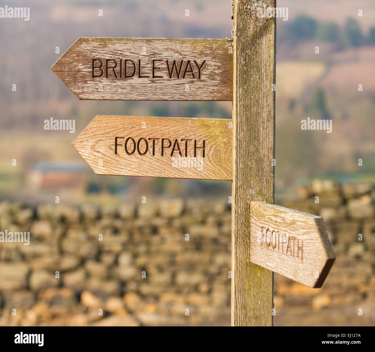 A wooden directions sign points the way to footpaths and a bridleway in a countryside setting. Stock Photo