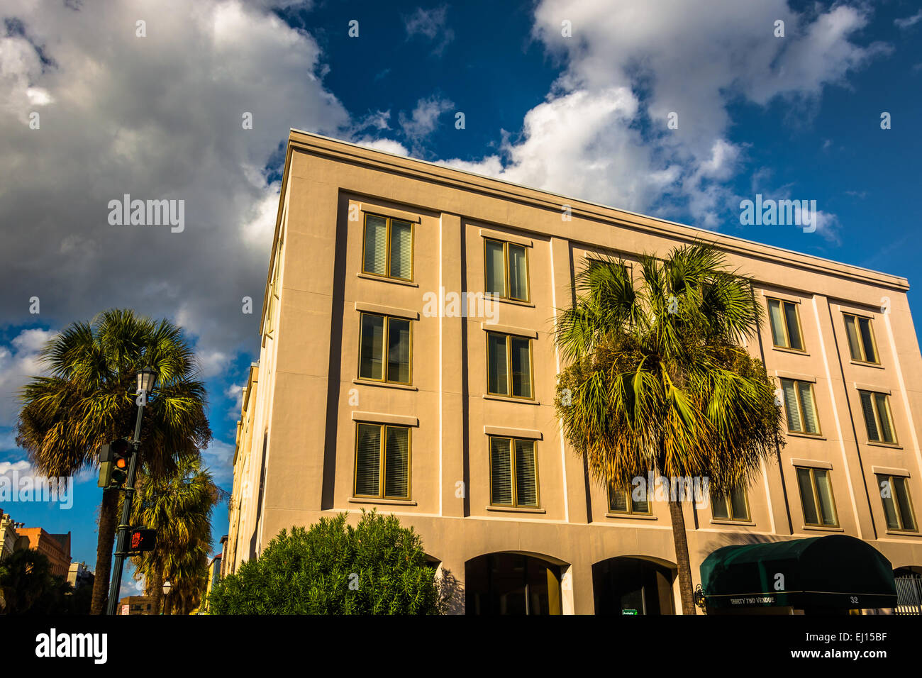 Palm trees and building on Vendue Street in Charleston, South Carolina. - Stock Image
