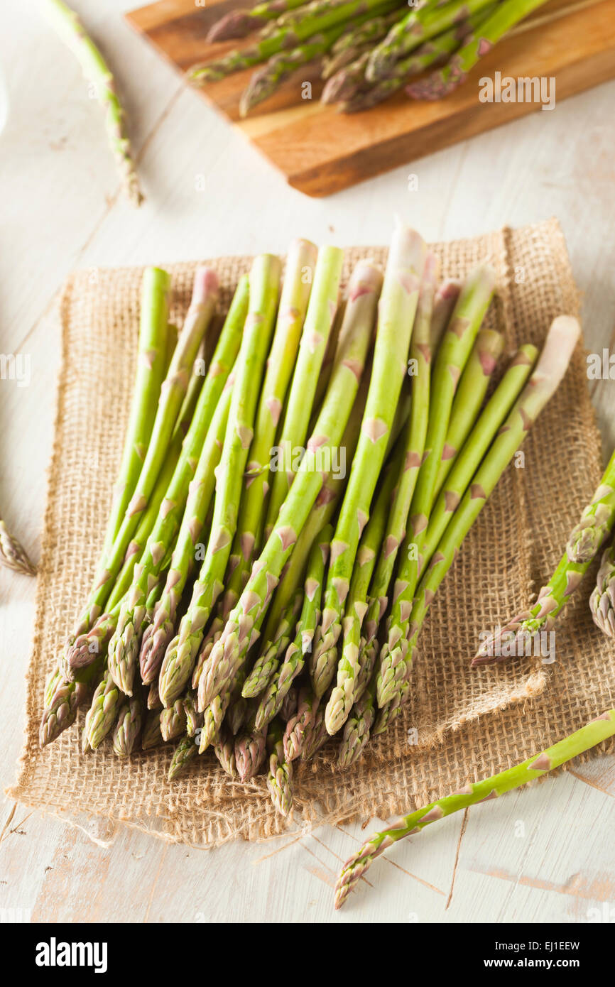 Organic Raw Green Asparagus Ready to Cook - Stock Image