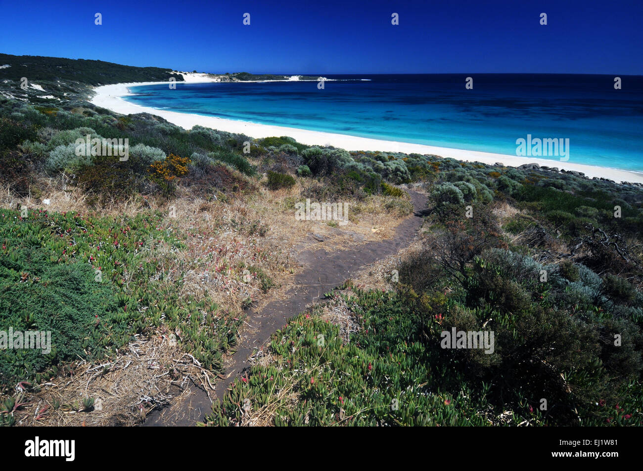 Track down to Injidup Beach, Cape Clairault, Leeuwin-Naturaliste National Park, Margaret River region, Western Australia Stock Photo