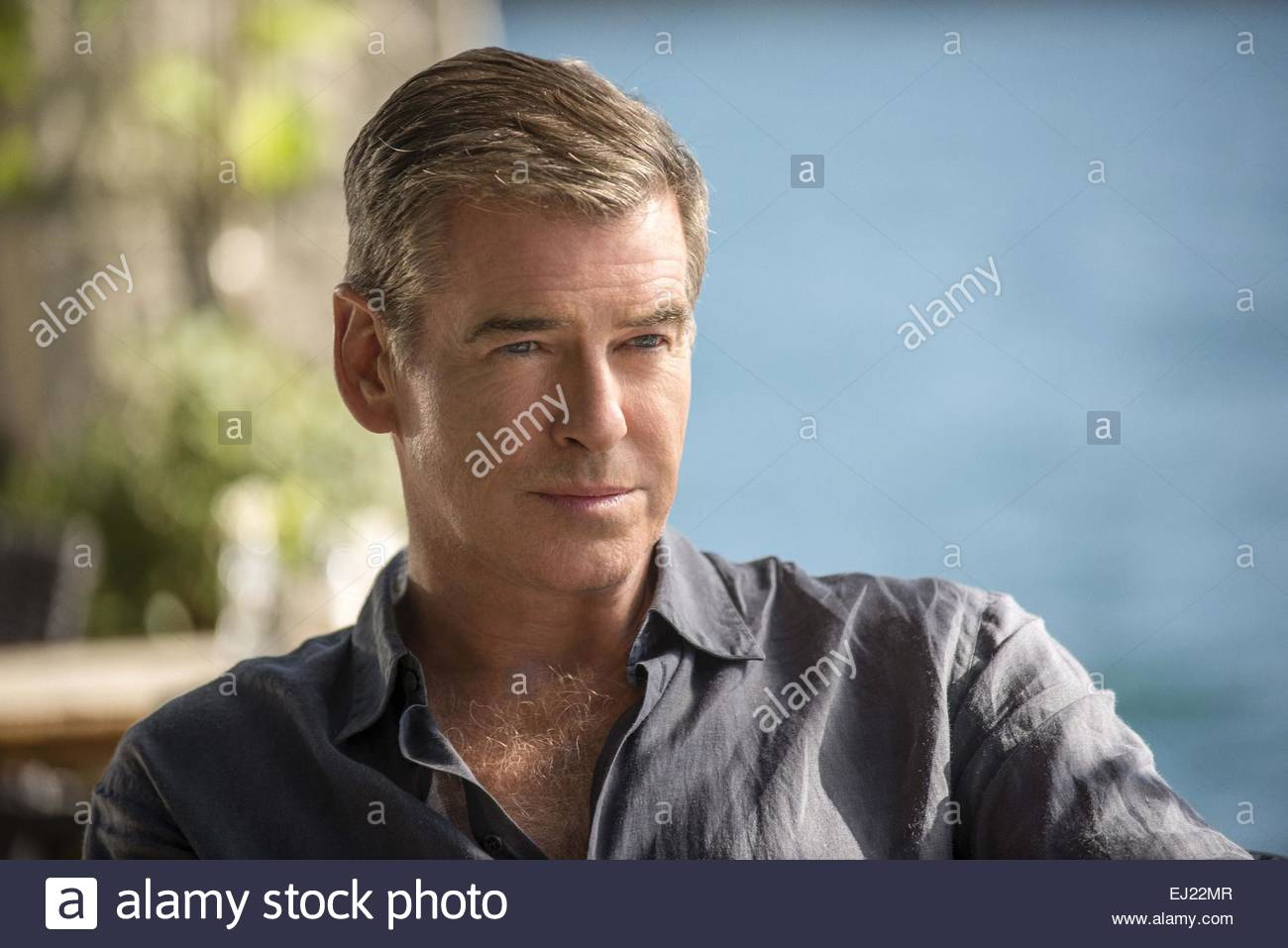The November Man 2014 Pierce Brosnan Stock Photos & The November Man ...