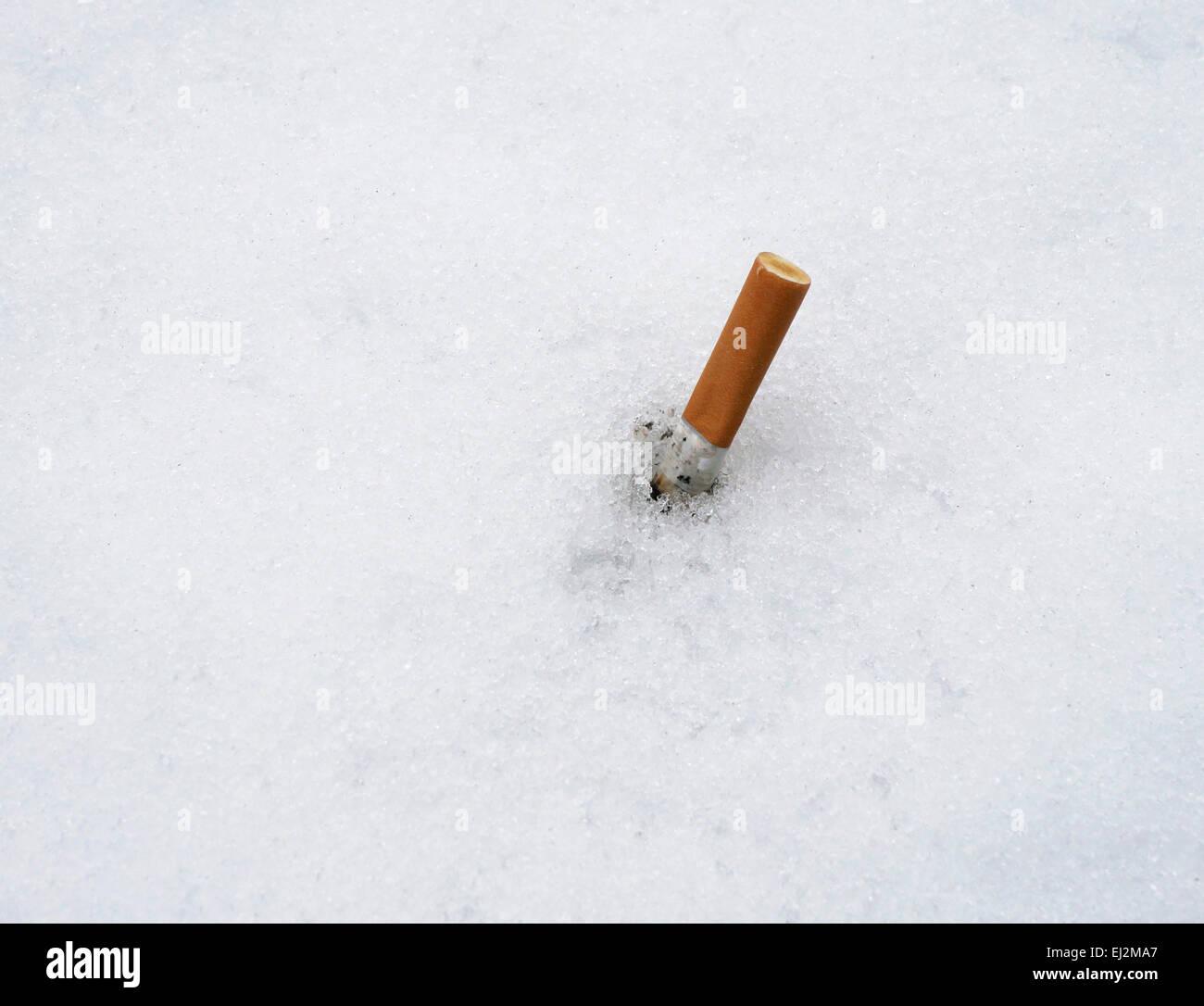 cigarette stub in snow - Stock Image