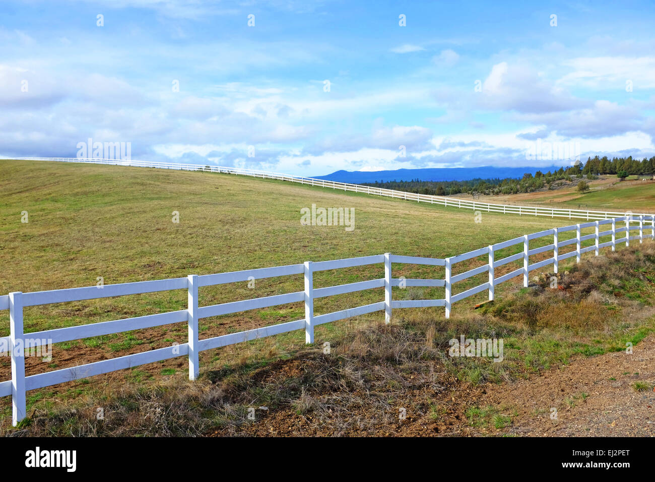 A long white ranch rail fence surrounding a horse pasture in Tumalo, Oregon - Stock Image