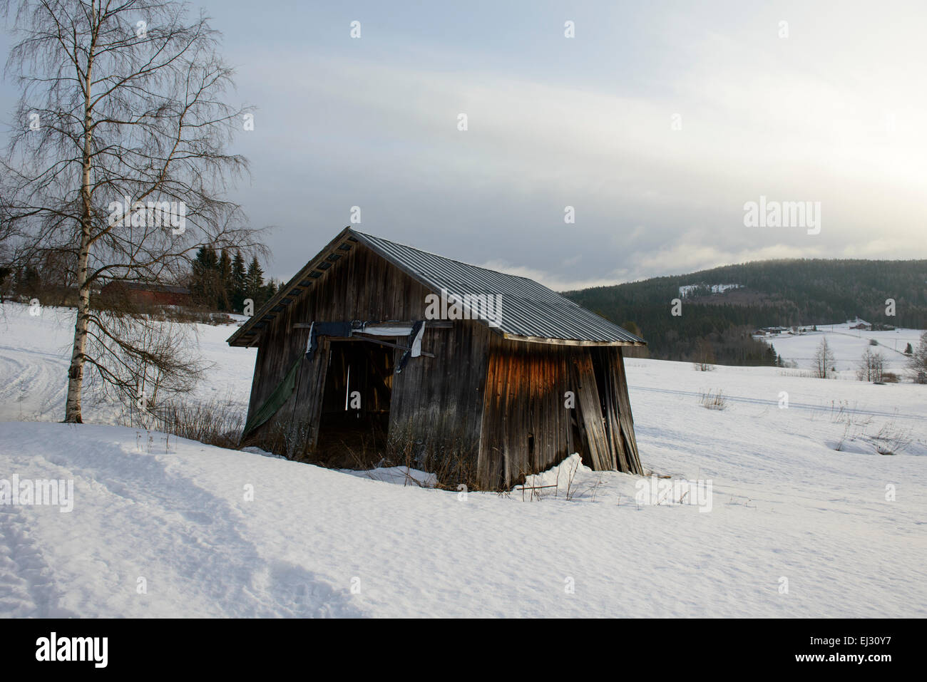 Old wooden barn in North Sweden farmland. - Stock Image