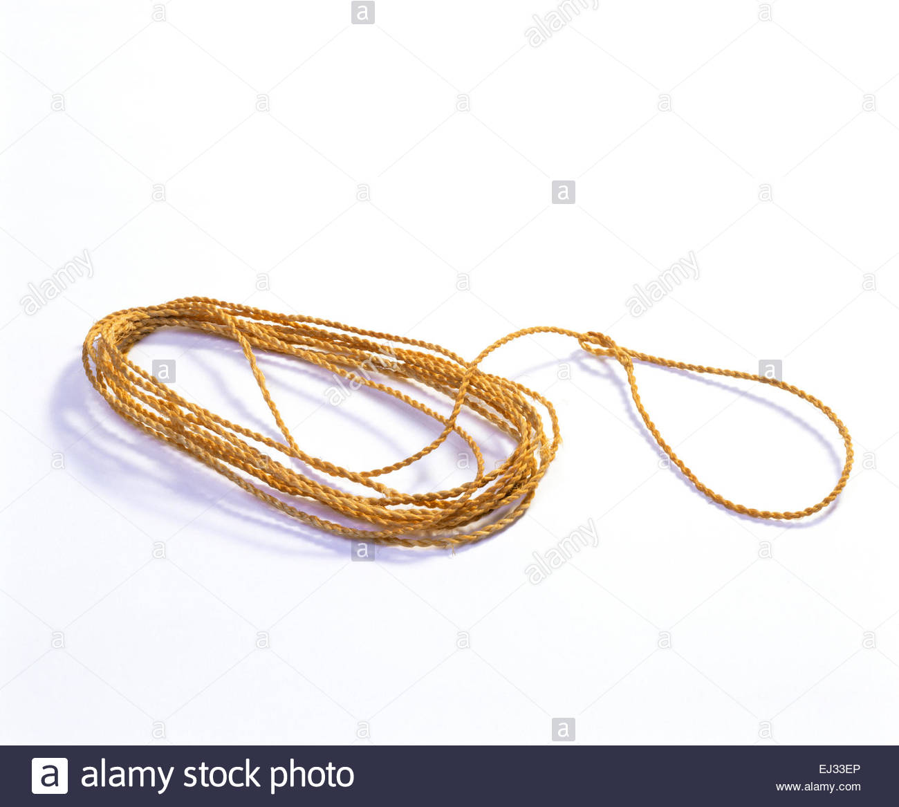 Anasazi yucca fiber small animal snare.  Mesa Verde National Park, Colorado. - Stock Image