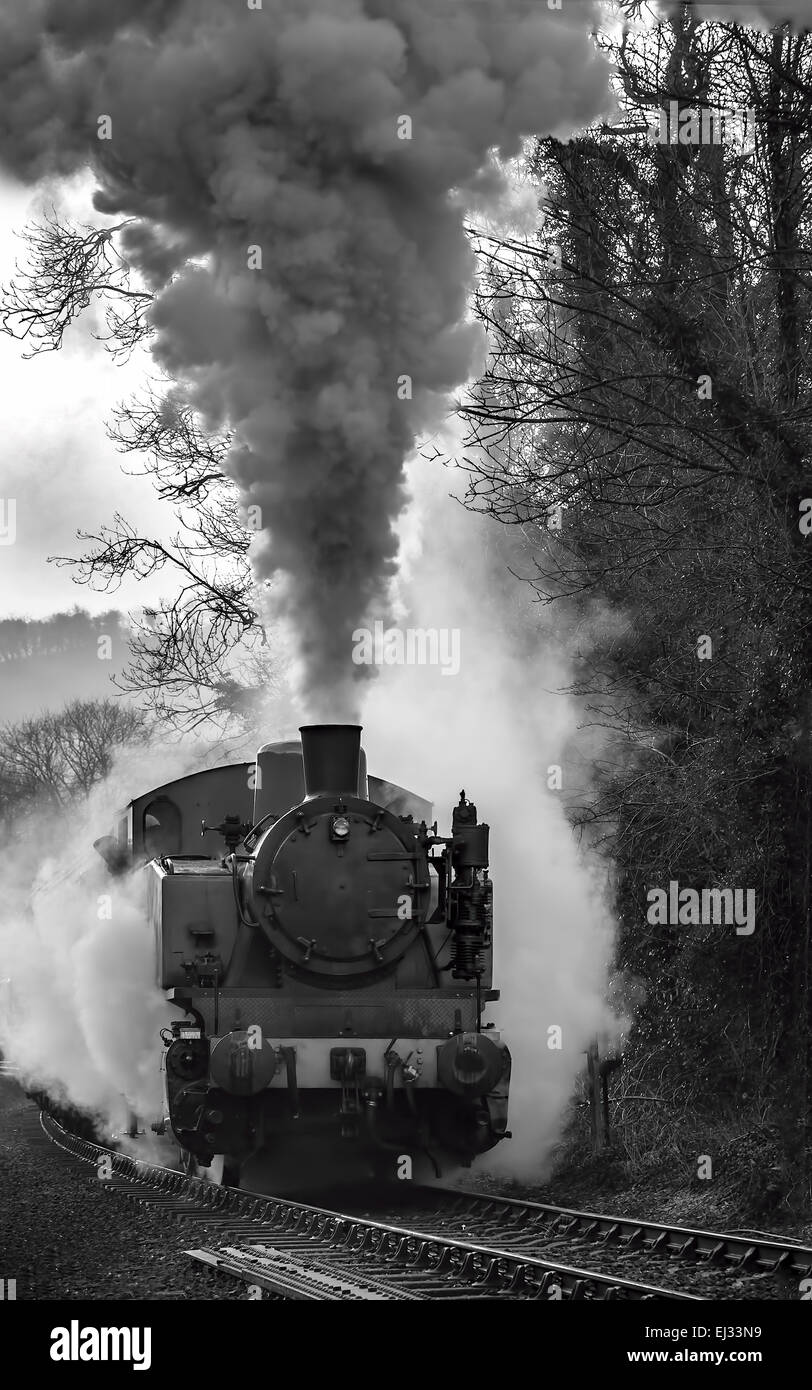 TKh 2944 on a slight incline steaming out of Consall Forge station Churnet Valley Railway. - Stock Image