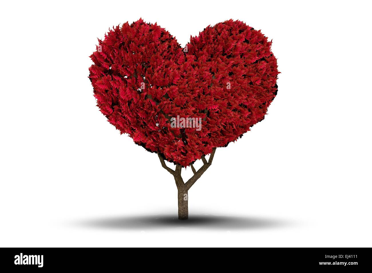 Love heart tree - Stock Image