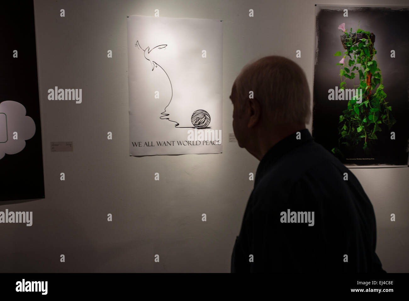 Visitor watches contemporary visual art exhibition during 2nd Grand Festival of Art for Peace in Tehran, Iran - Stock Image