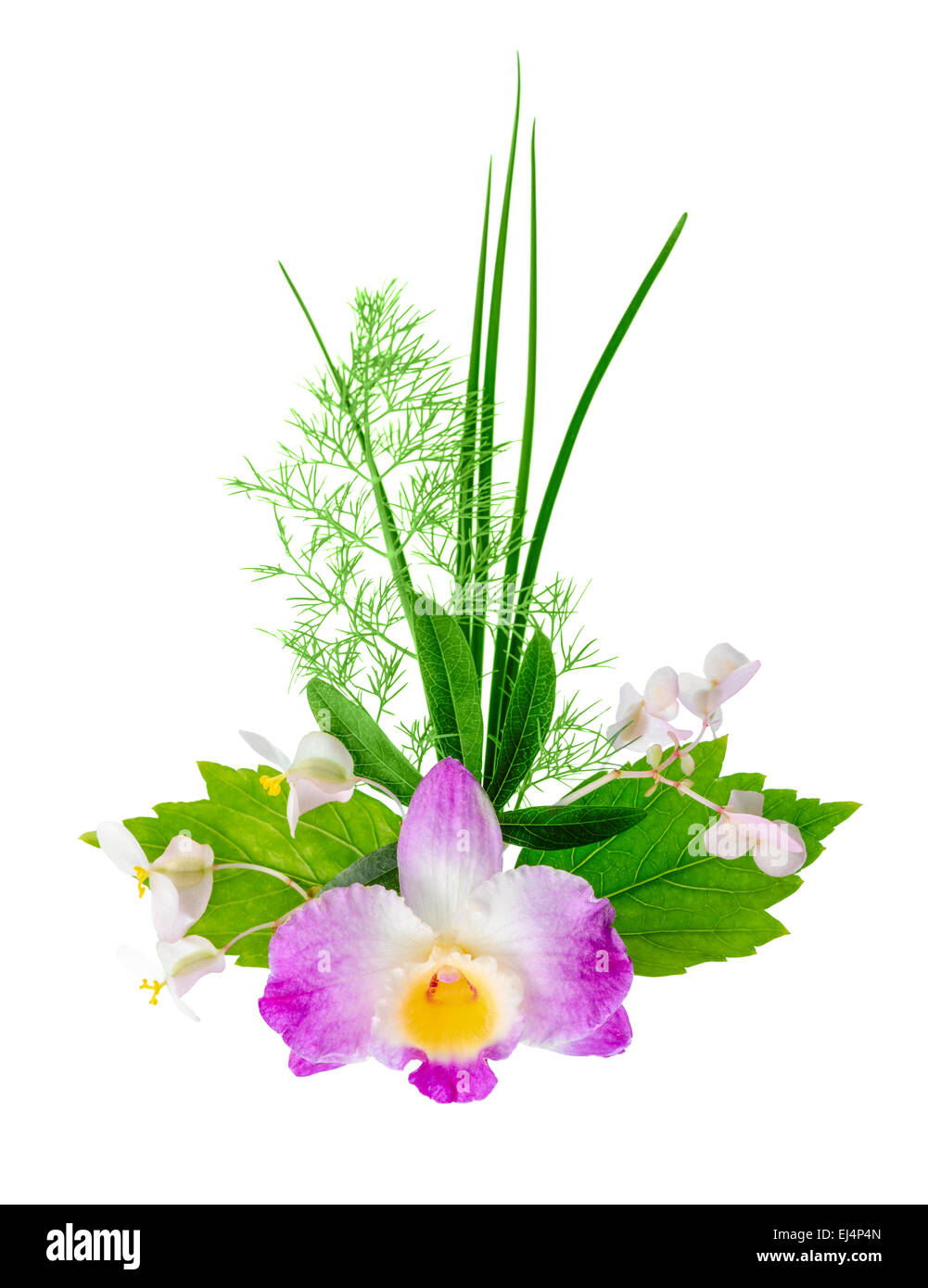 composition of exotic flowers bouquet is isolated on white ...